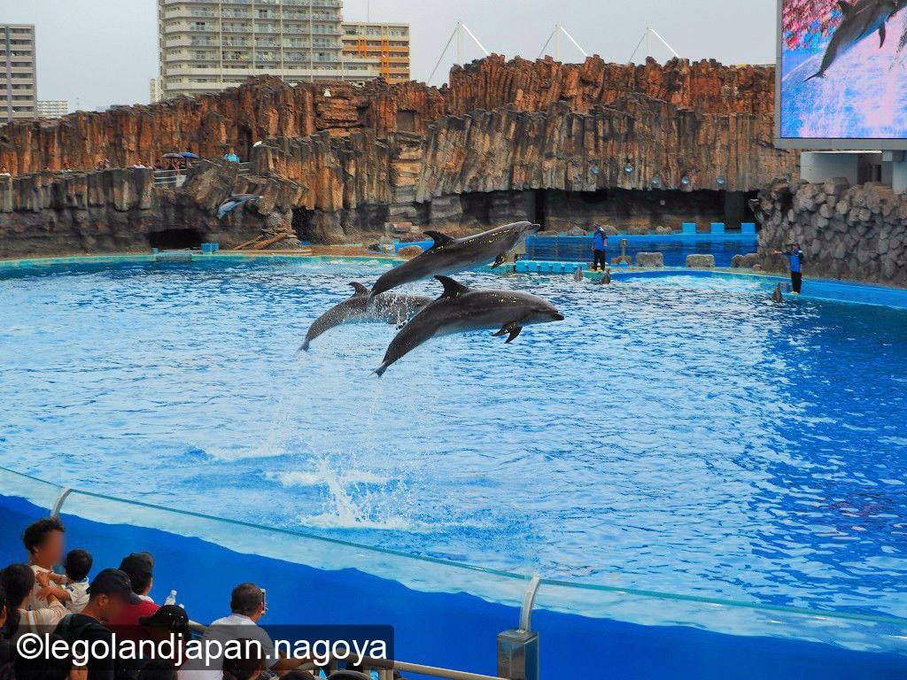 nagoya-aquarium-performance-11