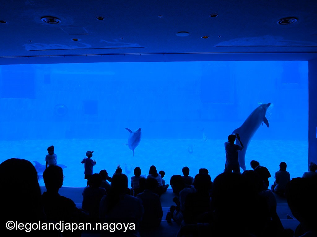 nagoya-aquarium-performance-30