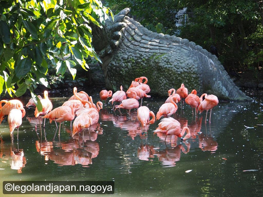 higashiyama-zoo-20