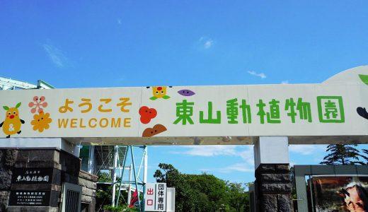 東山動植物園へ! 観光レポートをお届けします!