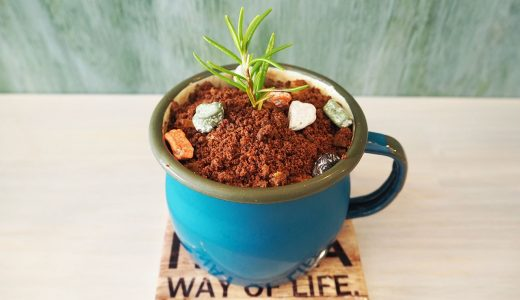 名古屋で植木鉢スイーツがあるカフェ「トリック・オアー・トリート」