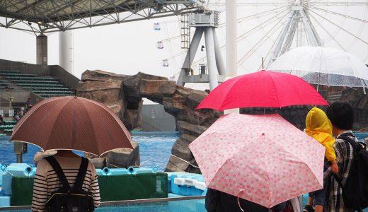 雨の日でも楽しい名古屋港水族館!