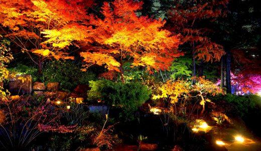 フラリエの紅葉とライトアップを観賞。可愛いイルミネーションと一緒に。