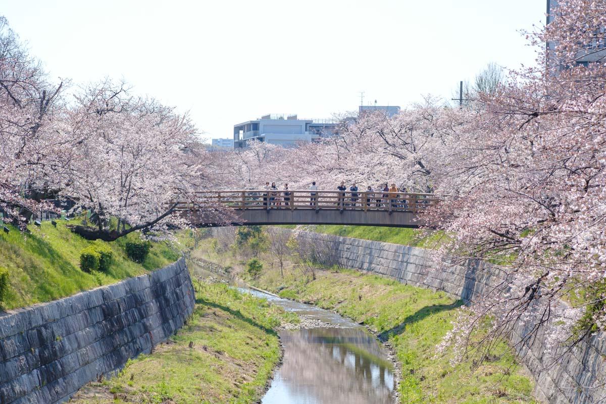 山崎川にかかる橋