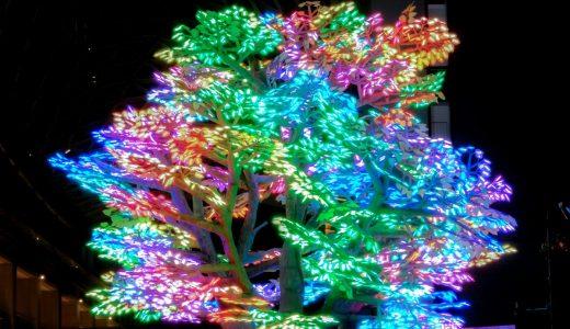 ささしまでイルミ! SASASHIMA XMAS LIGHTS【2019年】