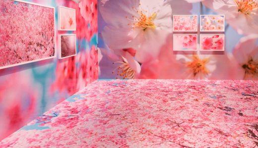 蜷川実花展に行ってきた。松坂屋美術館にて2021年4月4日まで開催!